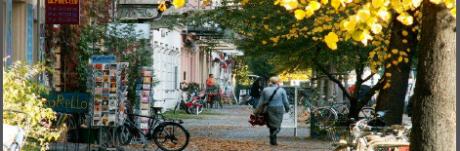 שכונת פרנצלאואר ברג בברלין