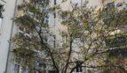 דירה בברלין בשכונת שטגליץ- Althoffstrasse3/19
